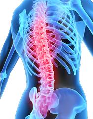 Воспаление суставов болезнь болят суставы коленные